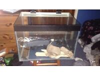 64 litre fish tank with working heater filter and light