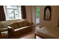 Large and bright double room in a friendly flat
