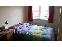 Double room to let in Modern Townhouse - South Belfast
