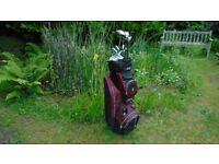 golf clubs ~ ideal starter set