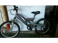 Dual suspension Raleigh bike
