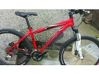 Specialized rock hopper/bike