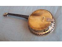 Ivory Queen tenor banjo ( 19 frets )