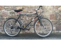 FULLY SERVICED RIGEBACK BICYCLE