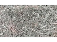 Fantastic quality hay haylage bales