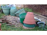 10+ plant pots, assorted sizes but mostly large