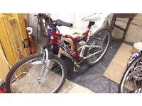 Team Saracen Mens Mountain Bike