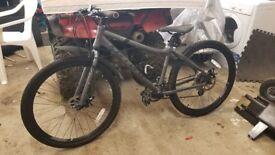 Carrero Ladies Bicycle *bike*