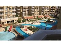 STUDIO FLAT FOR SALE WITH SWIMING POOL IN NABQ SHARM ELSHEIKH RED SEA DIVING EGYPT WITH 24H SECURITY