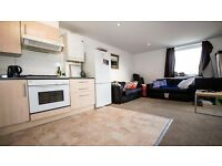 **2 BED FLAT** AVAILABLE EARLY FEBRUARY!! PRIVATE TERRACE!! OPEN PLAN KITCHEN/LOUNGE!! HOLLOWAY, N7!