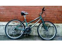 Bargain!! Ladies professional apen 15 speed 17 inch frame 26 inch wheels mountain bike
