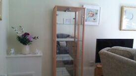 BEAUTIFUL DISPLAY UNIT WITH MIRRORED BACK, GREAT CONDITION, UNDER 1YR OLD...BARGAIN