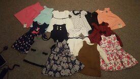 Large 9-12 month girls bundle