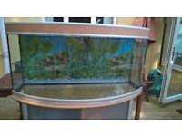 Aquatlantis 300 litre Aquarium