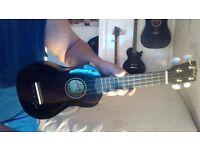 ukulele 2 months