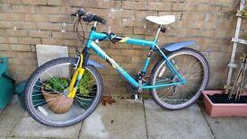 Rayleigh Apollo montain bike