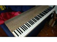 Ebony and Ivory Piano Keys