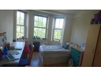 Friendly flat with Large Room in Camden/Chalk Farm