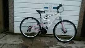 adults Apollo mountain bike