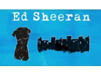 2x Ed Sheeran Tickets, 3 Arena, 13.04.17