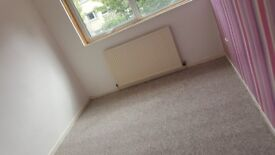 2 bed room flat mclearn crt ground floor .new carpets throughout .dhss fine deposit required 320 pm