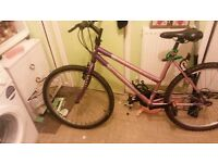 pink ladies mountain bike