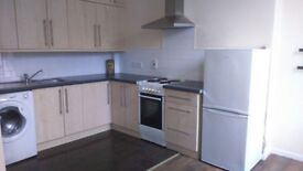 Beautiful one bedroom apartment in attractive residential area