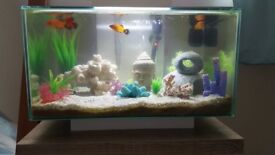 Fluva 23L fish tank (only 6 months old) comes with filter, good condition!