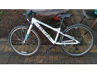 Childs Carrera Saluna 13'' Hybrid bike