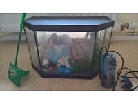 Small aquarium with filter and other accessories