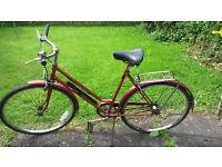 Vintage Bike Bicycle Men or Women