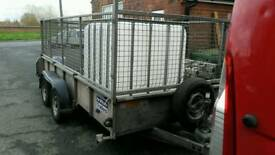 Ifor Williams 125gd with mesh sides