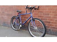 Medium Size Commuting Style Bike with Lights and Lock - Just Serviced