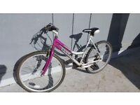 Ladies Concept Europa Mountain Bike