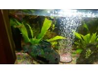 Sell aquarium with all include