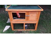 Guinea pig hutch in amazing condition