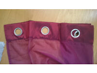 Ring top Voile Curtains