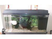 Juwel Aquarium Rekord 96 Litres Fish Tank