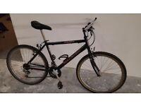 Max Raleigh Bike