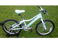 GIANT AREVA 2 LITE 20 KIDS BIKE * FULLY SERVICED / SUPER CONDITION *
