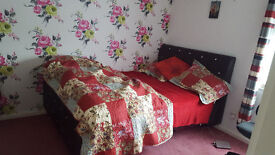 Room to rent Mon to Friday lets only in a 2 bedroom flat: 350pcm including all bills