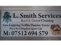 Gutter cleaning services.