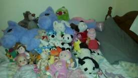 Kids teddy collection