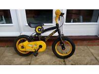 Stinger bike & Stablizers