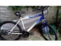 Apollo XC.26 Mens Mountain Bike