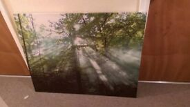 Two canvases