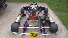 Go Kart Honda GX160