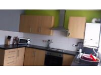 Large 2 bed house to rent on chestnut street