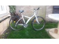 """BTWIN men's bike - 21 speed - 20"""" frame - fully serviced. Ready to ride away."""
