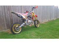 140cc wpb z40 race cam pit bike for sale